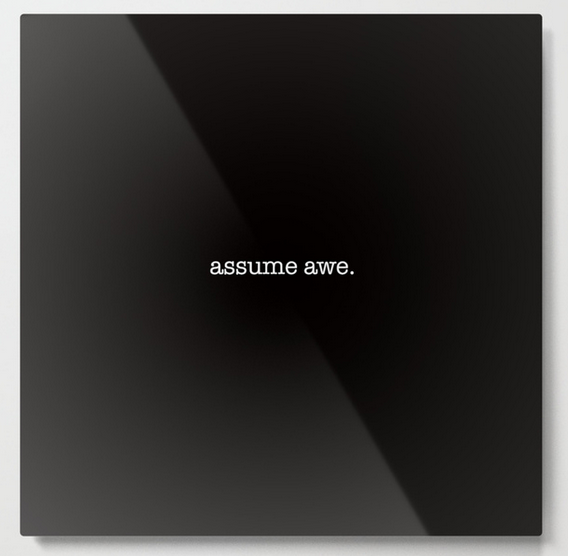 assume awe METAL WALL ART copy