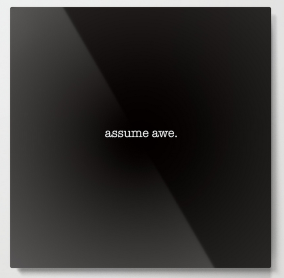 assume awe METAL WALL ART copy