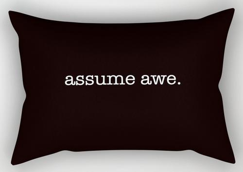 assume awe rect. pillow copy