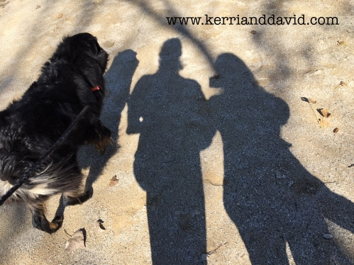 shadow des plaines river trailwebsite box copy