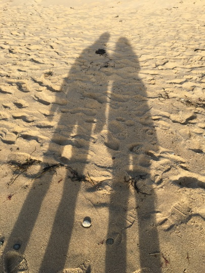 our shadows in the sand cape cod copy