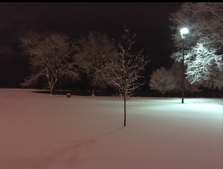 snow on the lakefront copy