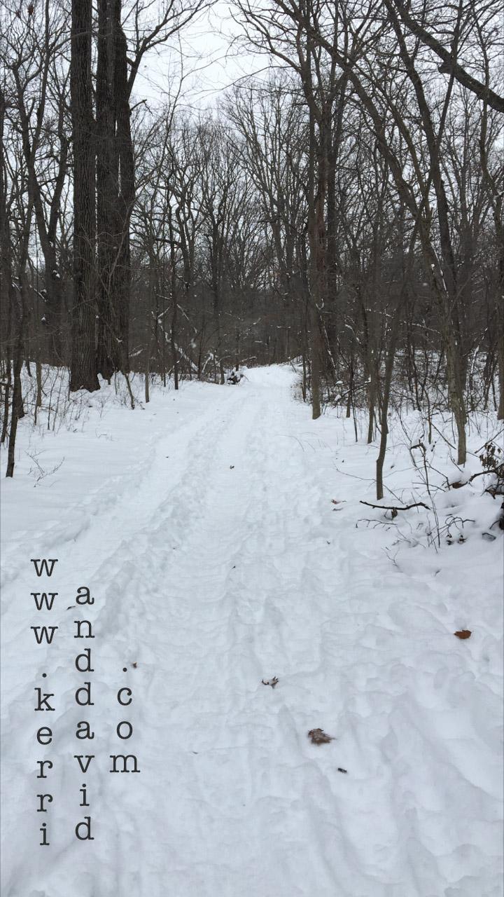 snowpath in bristolwoods website box
