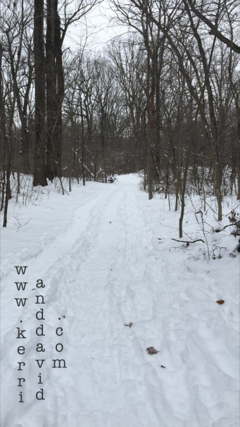 snowpath in bristolwoods website box