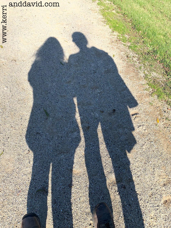 october shadows des plaines website box