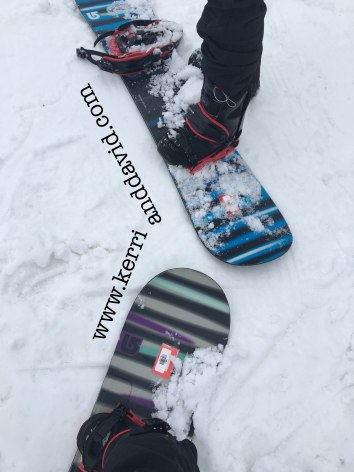 snowboards website box