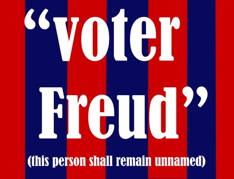 voter freud