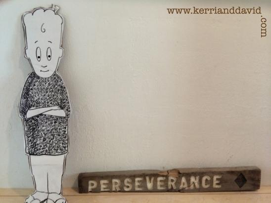 chicken eyes perseverance website box_edited-1